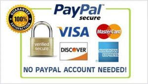 payment methods available major credit cards paypal